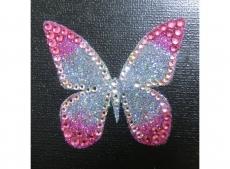 priya_butterfly_pk