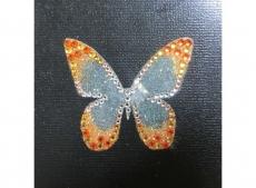 priya_butterfly_or