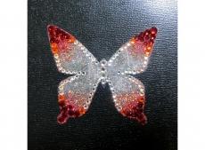 priya_butterfly_rd